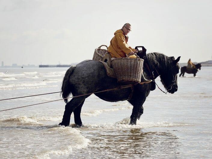 Horseback Shrimp Fishermen